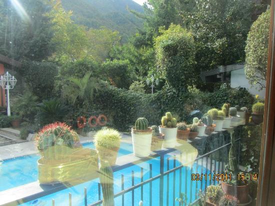 Zia Carmela: Vista piscina