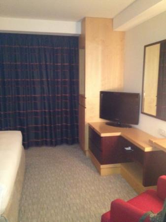Hyatt Regency Dubai: Television in room