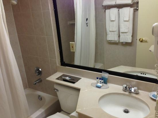 BEST WESTERN PLUS Grosvenor Airport Hotel: Bathroom