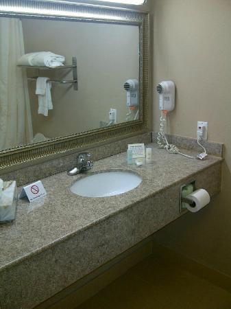 Comfort Inn & Suites : Bathroom
