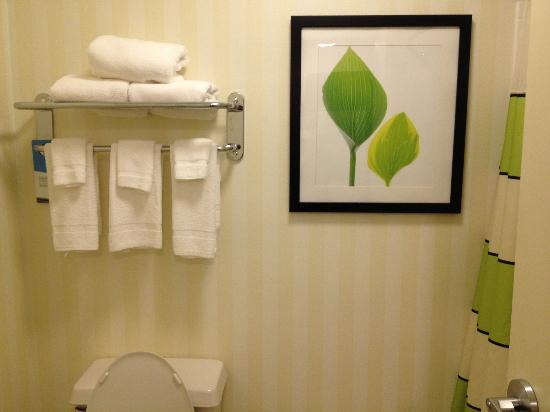 Fairfield Inn Grand Forks: Bath