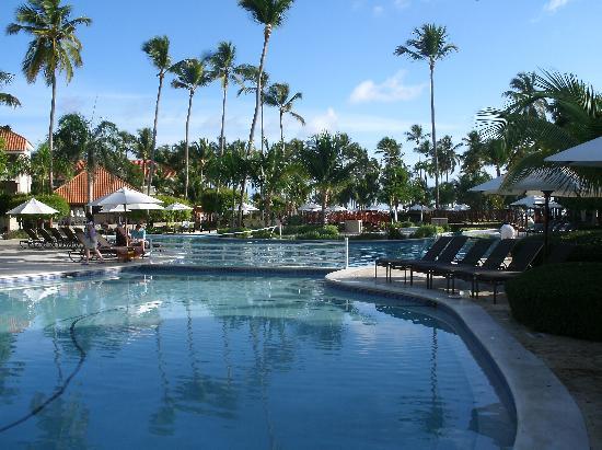 Dreams Palm Beach Punta Cana: Pool area