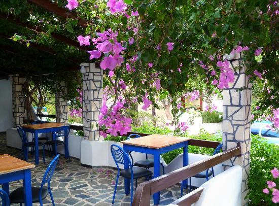 Oasis Taverna: Partial view of the patio of the Oasis Tavern near Frangokastello, Crete, Greece.