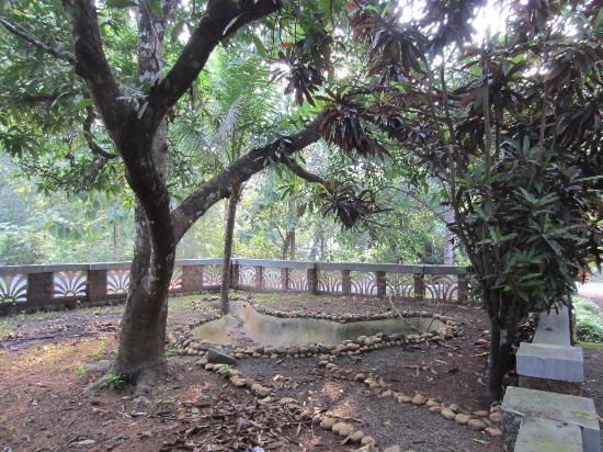 Eadens Hermitage: step garden