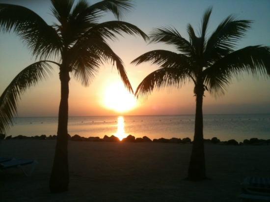Islander Resort, a Guy Harvey Outpost: Morning sunrise