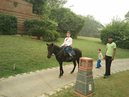 ‪‪Westin Sohna Resort and Spa‬: Pony ride is fun