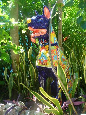 El Jardin de Frida: garden