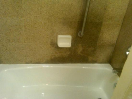 Days Inn Jamaica - Jfk Airport: new marble tile but unfornately i think the water is going under the tile.Thank God it upheld fo