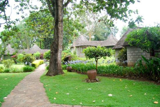 Lake Duluti Serena Hotel: Serena Mountain Arusha Tanzania Africa