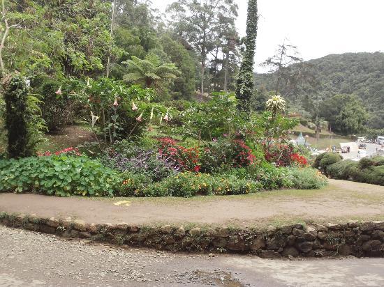 Nuwara Eliya, Srí Lanka: Hakgala Botanical Garden