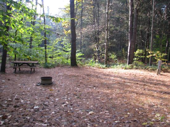 Whispering Pines Campsites: the accessible campsite