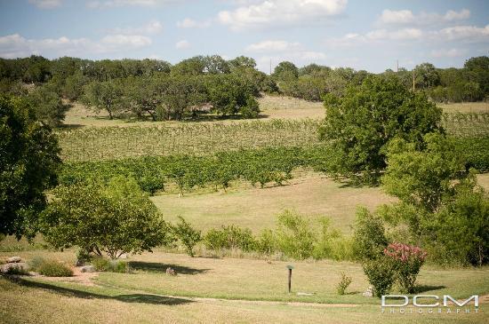 Tasting Room Picture Of Flat Creek Estate Winery Marble Falls Tripadvisor
