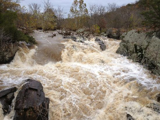 McLean, VA: Potomac swollen after storm
