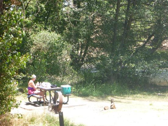 Sunshine Rafting Adventures: Nice picnic