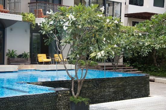 Baan Laimai Beach Resort: Pool