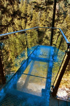 Capilano Suspension Bridge Park: Capilano Sky Walk