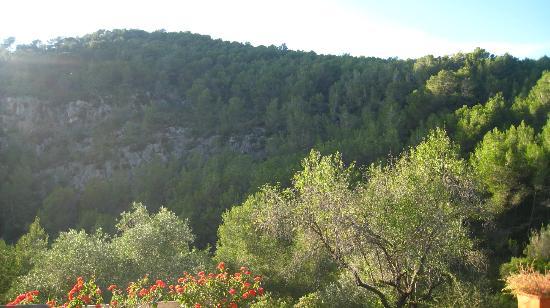 Masia Sumidors : mountain