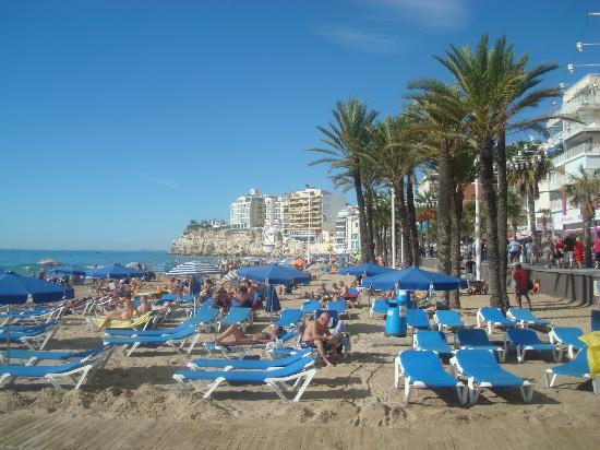 Sandos Monaco Beach Hotel Spa Vieux Benidorm