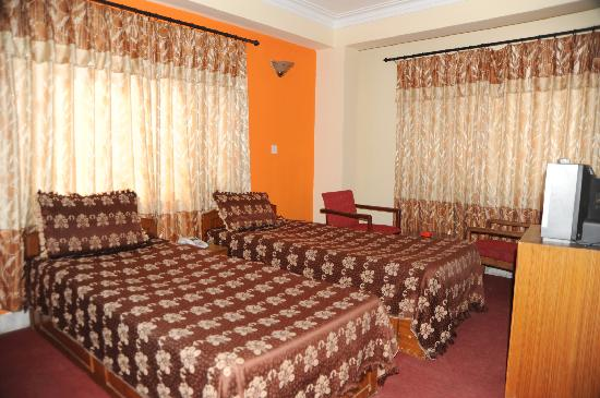 Annapurna Guest House: Stand. Twin Bedroom