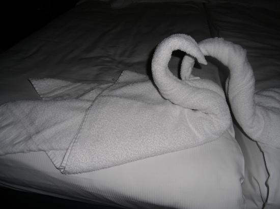 Parkhotel: Asciugamani