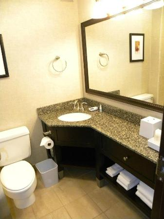 Four Points by Sheraton Kalamazoo: Clean bathroom