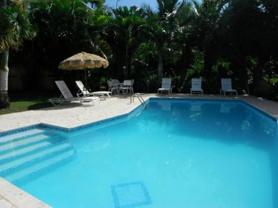 The Crow's Nest: piscina siempre limpia