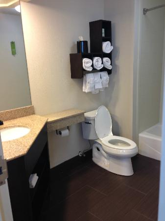 Hampton Inn & Suites New Orleans Downtown (French Quarter Area): Bathroom (obviously, haha)