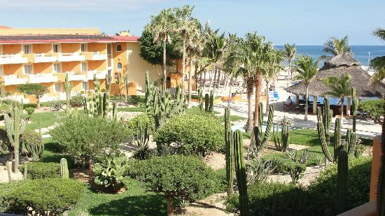 Posada Real Los Cabos: View of some of the garden