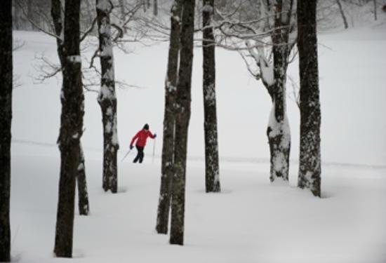Grafton Trails & Outdoor Center: Offering 15k of Nordic ski trails at Grafton Ponds Outdoor Center