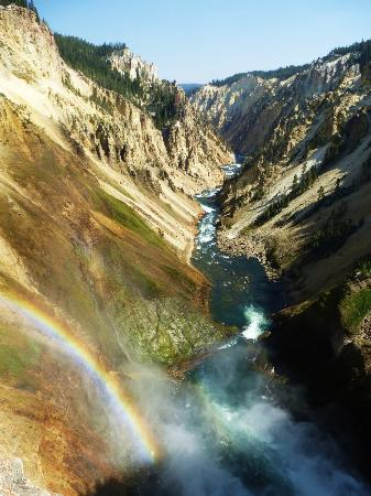 Lower Yellowstone River Falls: taken from the Brink of the Lower Falls