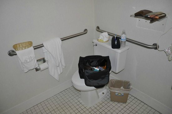 Days Inn Torrey Capital Reef: This handicap room didn't even have counter space for a handicap person. note basket on rail