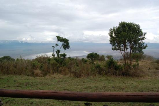 Ngorongoro Serena Safari Lodge: View from our patio