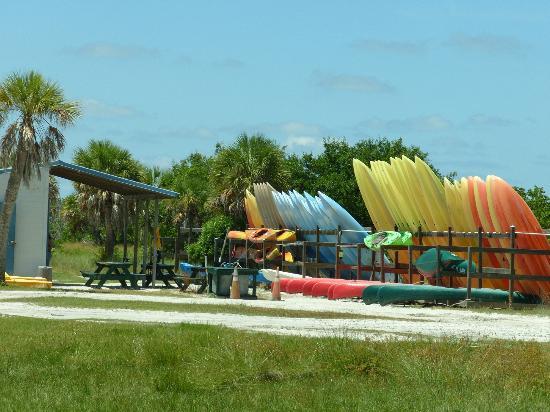Fort De Soto Park: Kayaking company