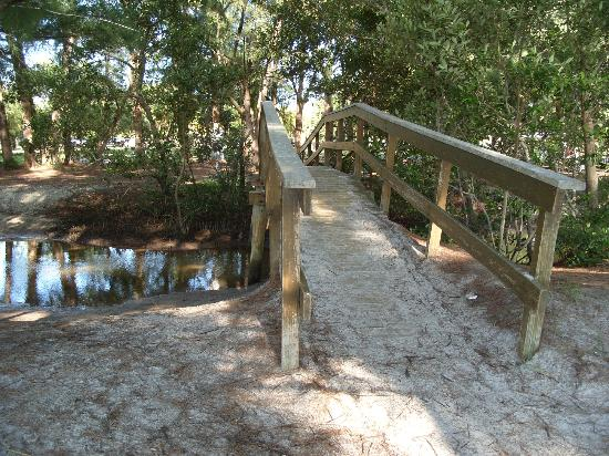 Tierra Verde, FL: The brook & bridge