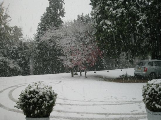 رودلوي أرمز: View from the front door 
