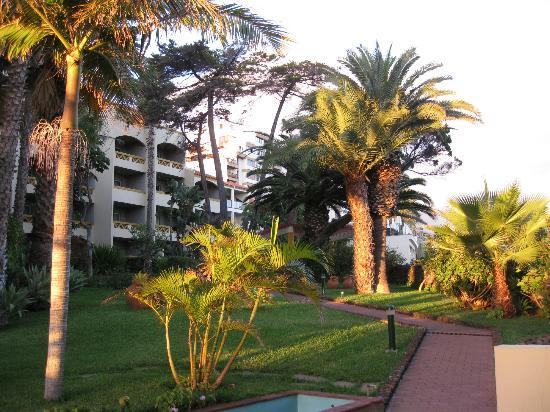 Pestana Palms : The garden and apartments