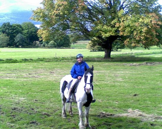 Killarney Riding Stables: Beautiful sights, good steeds