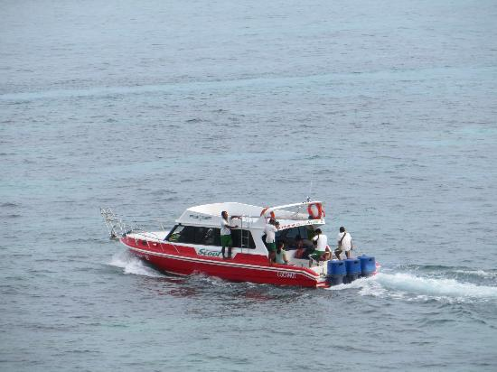 Batu Karang Lembongan Resort & Day Spa: This is the Scoot Boat ferry to the Island