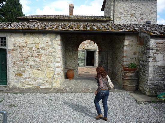 Entrance to Azienda Agricola Masseto