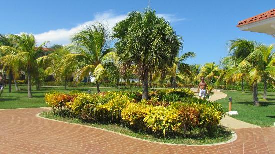 Memories Varadero Beach Resort: paysage