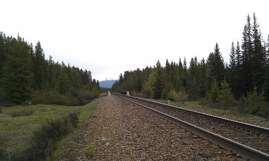 Baker Creek Mountain Resort: Train line by the property