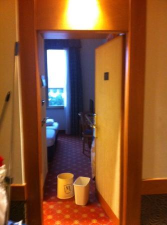 Grand Hotel Mediterraneo: camera