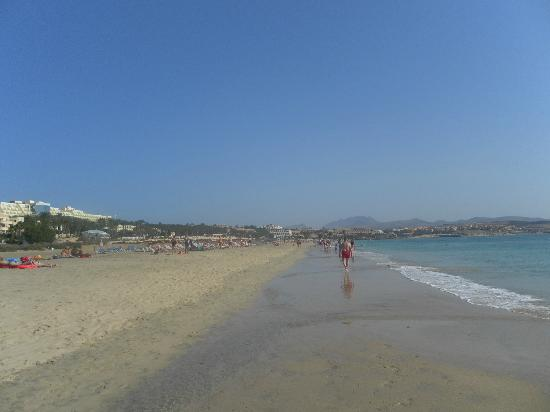 SBH Costa Calma Palace: Beach by hotel
