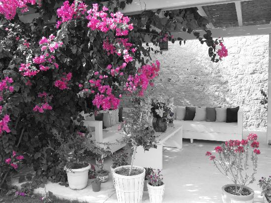 Alura Boutique Hotel: Arka bahçedeki oturma alanı