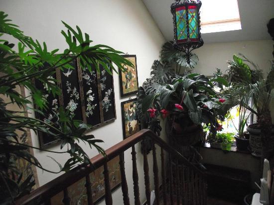 """Hotel Les Bluets: Blick in den """"Treppenhaus-Dschungel"""" mit schöner Lampe"""