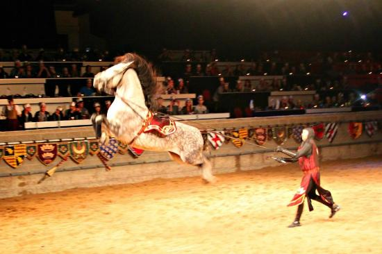 Medieval Times Dinner & Tournament - Toronto - 10 Dufferin St ~ Exhibition Place, Toronto, Ontario M6K 3C3 - Rated based on 2, Reviews