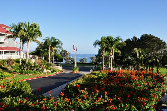 Laguna Cliffs Marriott Resort & Spa: beautiful grounds