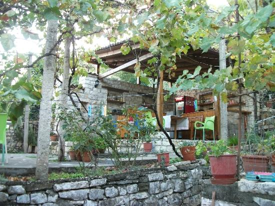Lorenc Guesthouse & Hostel Gorica: The garden area