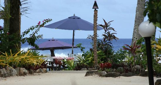 Manuia Beach Resort: View from our garden room