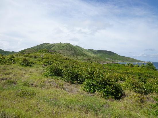 Pinel Island: Hike looking to west